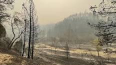 Californians endure intense weekend of wildfire fears