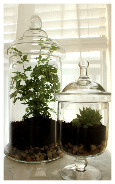 Cheap Apothecary Jars