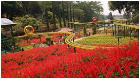 Tempat wisata malang yg kekinian beserta theme parknya akan memacu adrenalin bagi siapa saja yg berkunjung,cocok juga untuk liburan keluarga,berikut ulasannya