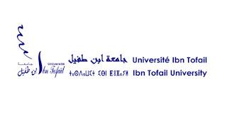 Exemple Concours de Recrutement des Administrateurs 2ème grade (Audit) 2019- Université Ibn Tofail