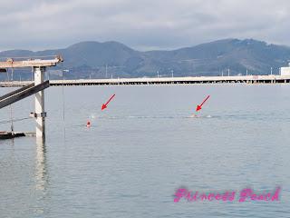 漁人碼頭游泳中