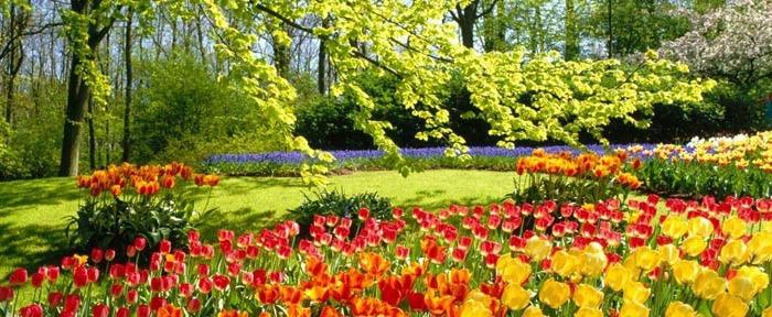 Un jard n profesional hecho por ti mismo con la ayuda de for Que es un jardin ornamental