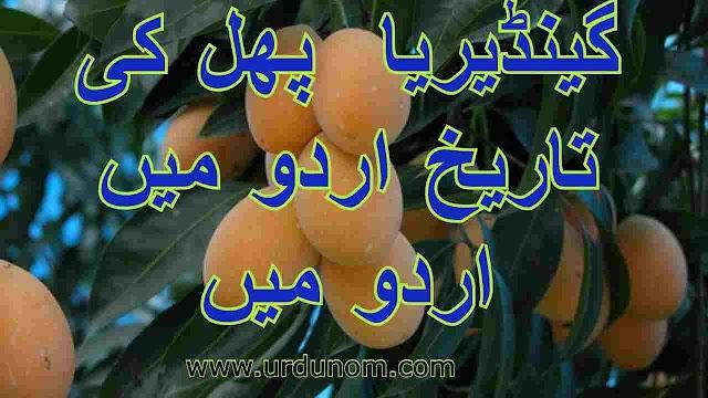 گینڈیریا  پھل کی تاریخ اردو میں | History of gandaria fruit in Urdu