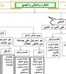 اعراب المثنى وجمع المذكر السالم لغة عربية