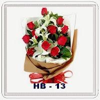 HB 13