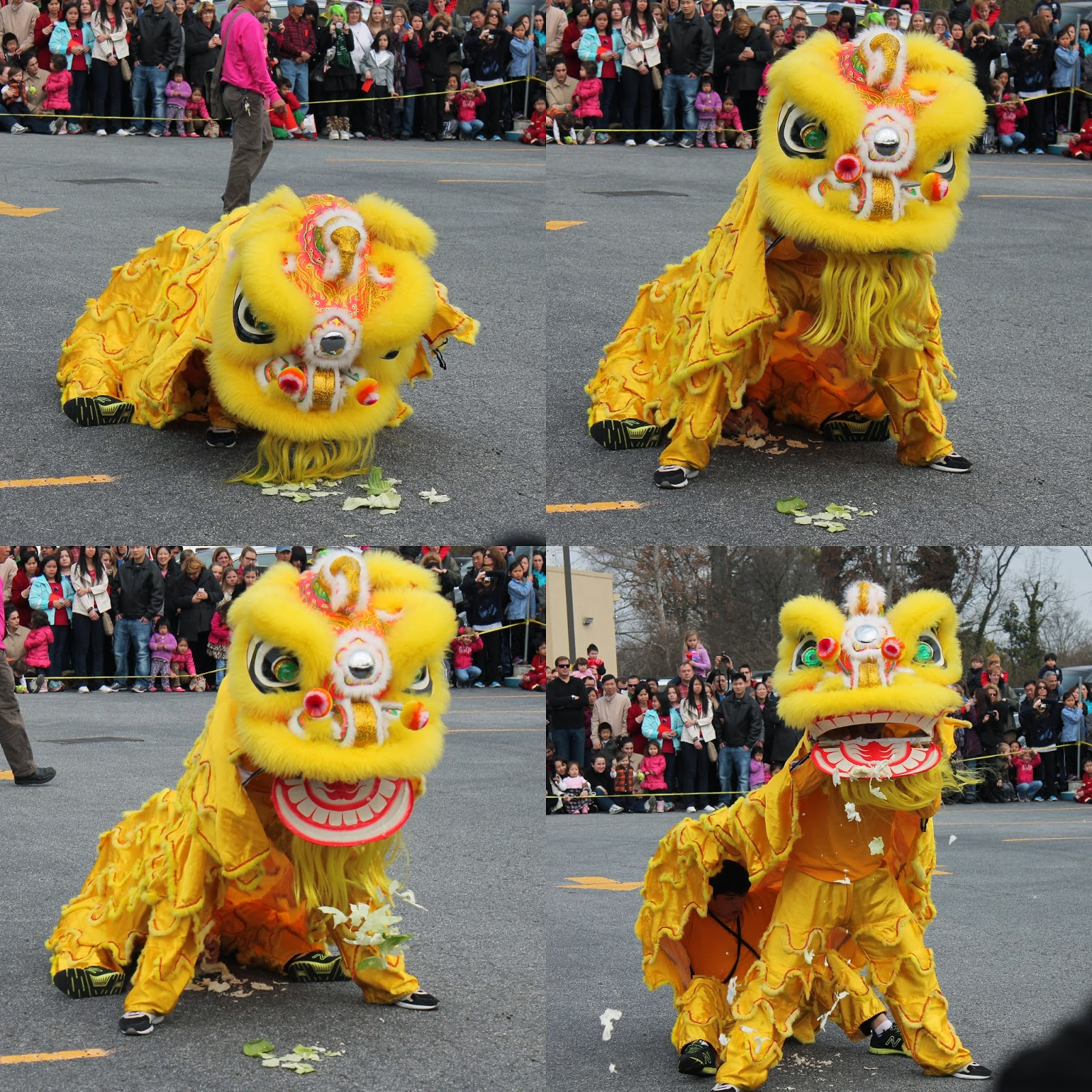 Chinese New Year Celebration in Atlanta | Lindsay Eryn