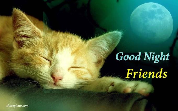 Sweet goodnight message