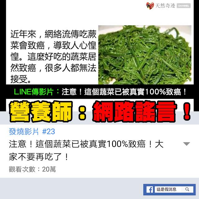 蕨菜 致癌 謠言 過貓