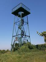 Der Carl-Netter-Turm bei Bühl (Baden)