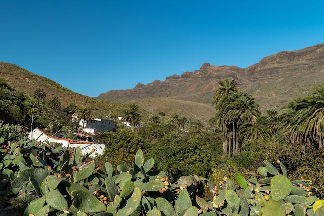Roadtrip Gran Canaria – Bei dieser Inselrundfahrt lernst du Gran Canaria kennen! Sightseeingtour Gran Canaria. Die schönsten Orte auf Gran Canaria 17