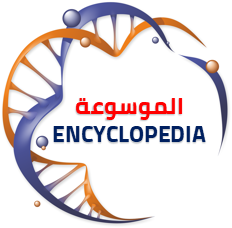 إنسكلبيديا | ENCYCLOPEDIA