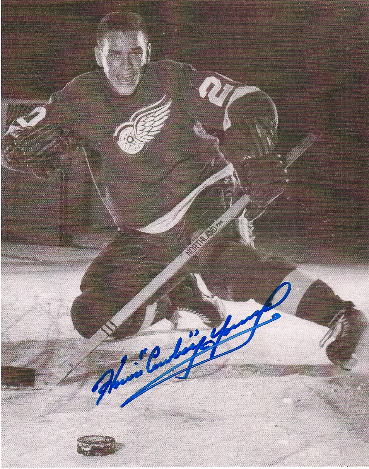Hockey Ink In The Mail A Season In Autographs 19601961
