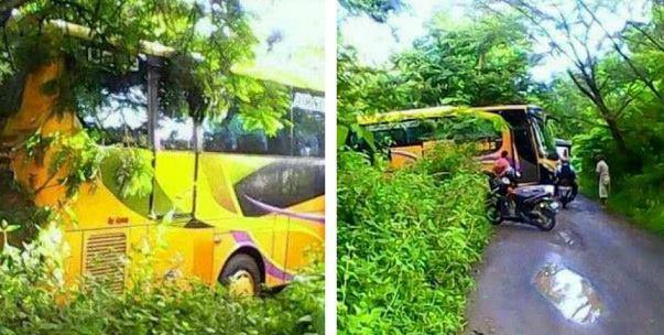 Misteri Bus Yang Tiba-Tiba Terjebak Di Dalam Hutan Jati, Begini Penuturan Sang Sopir