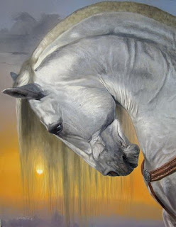 cuadros-caballos-de-paso-colombiano