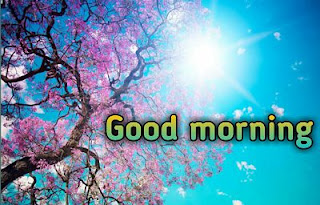 Good morning photos free download