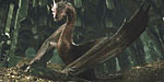http://shotonlocation-eng.blogspot.com/search/label/The%20Hobbit%3A%20The%20Desolation%20of%20Smaug