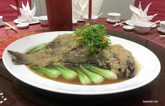 Steamed Sea Grouper with Cabbage in Premium Soy Sauce