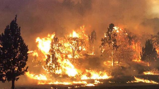 Ένας πλανήτης «μάχεται» με τις φλόγες - Οι παγκόσμιες εξελίξεις