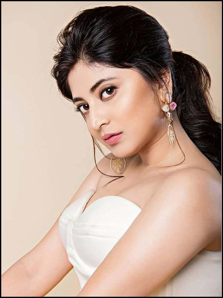 Murder In The Hills Hoichoi Web Series Cast Sandipta Sen