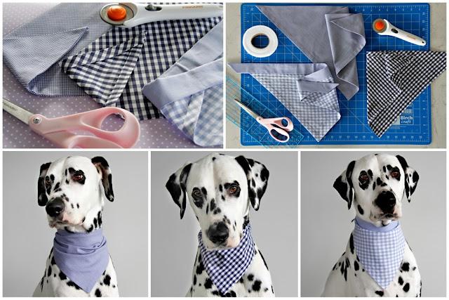 Dalmatian dog modelling homemade bandanas