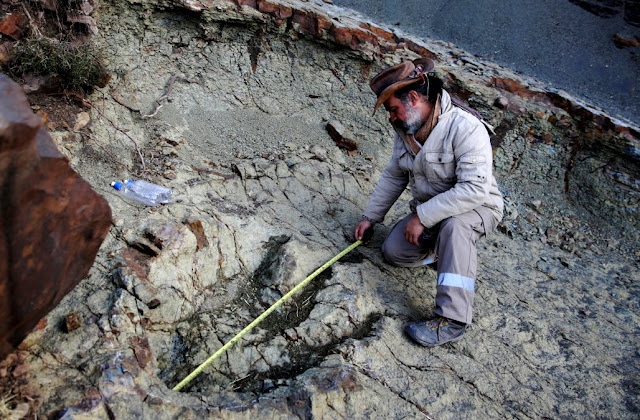 Huge Dinosaur Footprint Discovered in South America