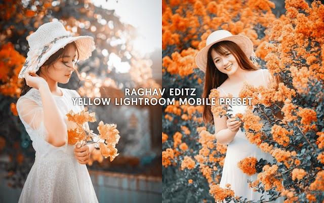 Yellow Lightroom Mobile Preset | Lightroom Preset