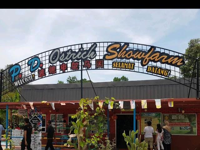 Tempat Menarik Di Port Dickson Ostrich Showfarm