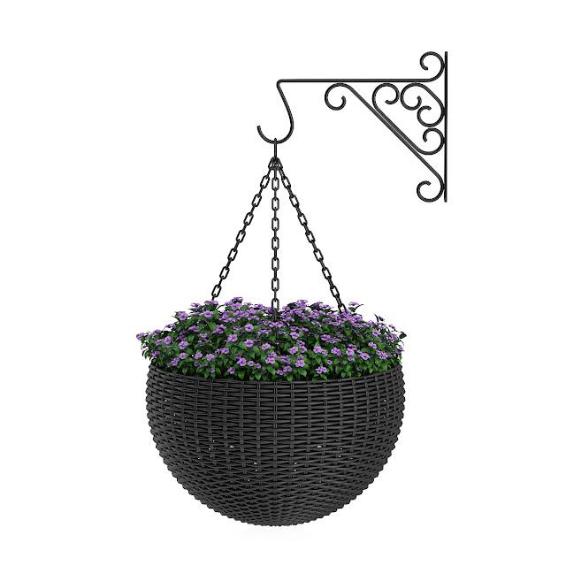 3D model free -  Plants_24