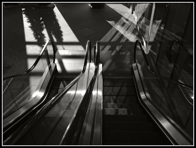 iPhoto; iPhonography; Escalator