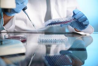 Bladder Biopsy CPT Code