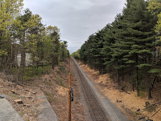 tree trimming is very evident as the MBTA makes room for the new PTC system being installed on the Franklin Line. Only 2 more weekends for shuttle service!