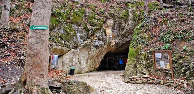 Peștera Valea Cetății a fost descoperită în urmă cu aproximativ 60 de ani.