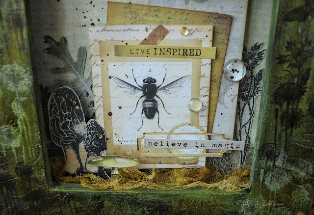 #altered#mixedmedia#scrapbooking#7dotsstudio#nature#photoframe#art#