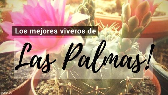 Listado de los Mejores Viveros de la Provincia de Las Plamas, España, donde puedes comprar plantas para tus proyectos