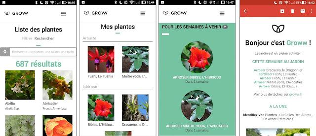 screen groww application green