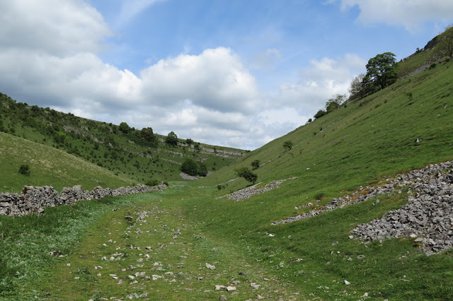Further into the valley, the ground is dry. Eroded limestone scars mark the slopes of the dale.
