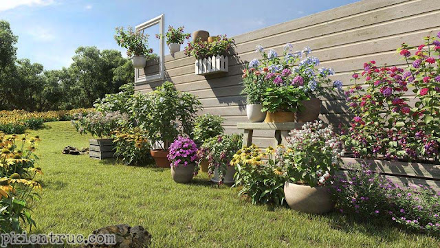 Model các chậu hoa sân vườn đủ màu sắc