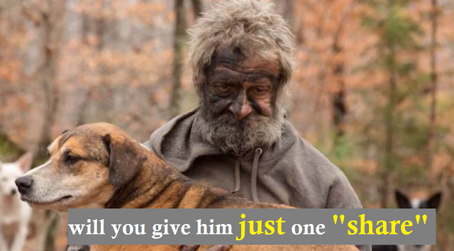Homeless Man Was Forced To Say Goodbye To The Stray Dogs He'd Been Caring For In The Woods