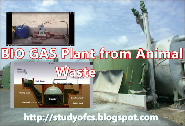 how to make bio gas plant in home