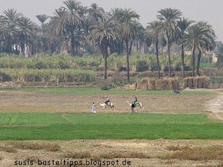 Reisende in Ägypten Foto von Stampin' Up! Demonstratorin in Coburg