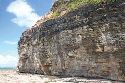 Klasifikasi Batuan Sedimen