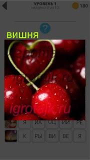 крупные ягоды вишни на всей фотографии 1 уровень 400+ слов 2