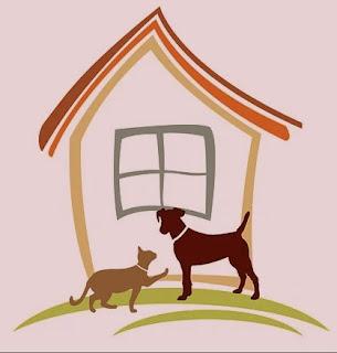 Perro y gato en la casa