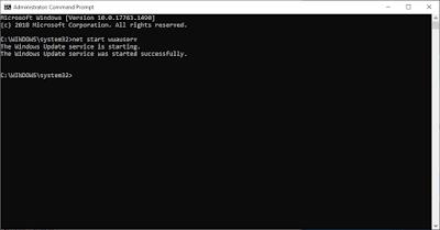 Perintah CMD Untuk Mengaktifkan Services Windows Update Di Windows 10