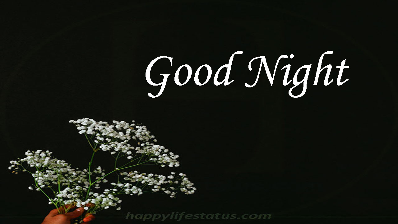 10 New Good Night Images Hd Gud Night Images Romantic Good Night Images