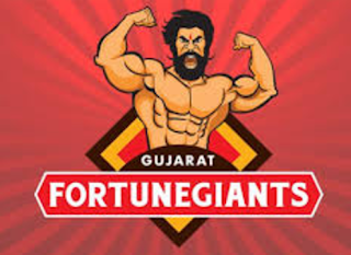 Gujarat Fortune giants team players list