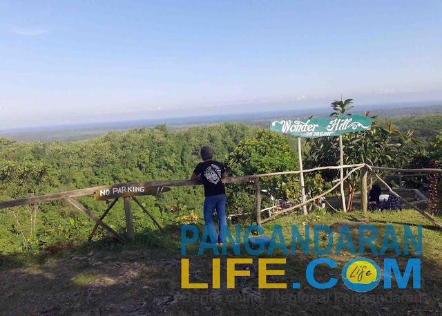 dari atas bukit jojogan bisa melihat pemandangan