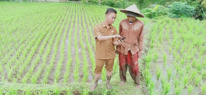 Apakah penting melakukan branding bagi Penyuluh Pertanian?