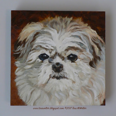 """Sophie"" 8""x 8""in., oil on gessobord, ©2017 Tina M.Welter  Miniature Imperial Shih Tzu dog portrait"