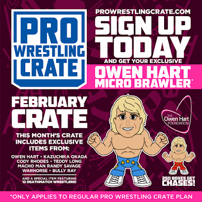 Pro Wrestling Crate Exclusive Owen Hart Micro Brawlers Figure